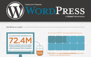 WordPress Stats [Infographics]
